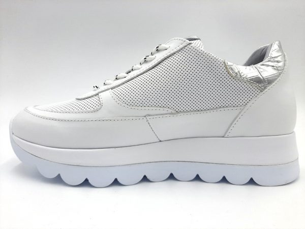20210401 190204 Кросівки жіночі ALPINO модель 3/432